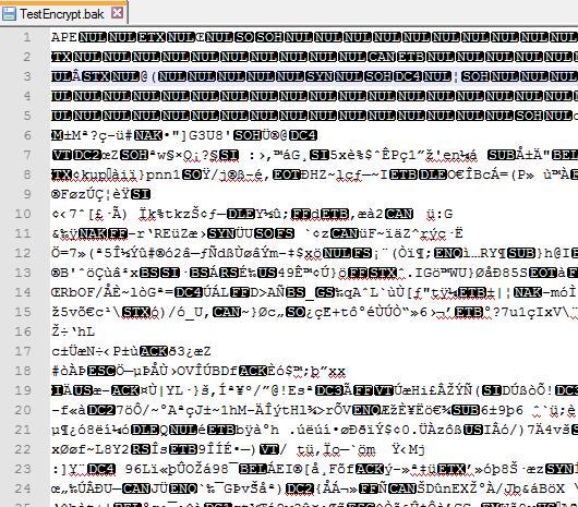 Encrypt09